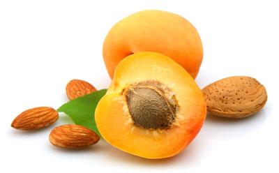 Alternativ kræft behandling med bitter abrikos kerner