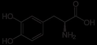 Alternativ Behandling Parkinson's  Disease - Levodopa